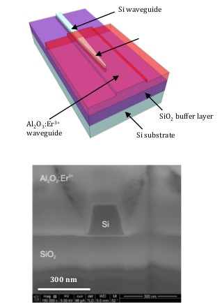 Schematic and SEM image of a erbium-doped waveguide on silicon for light amplification
